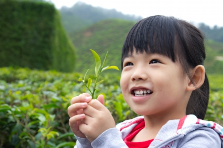 cute young farm girl: Young child holding a tea leaf in her hand