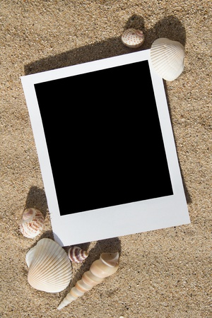 Polaroid photo frames on the beach with seashells around