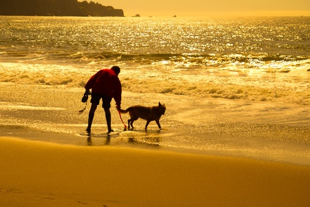 Silhouette of a man with dog playing on beach photo