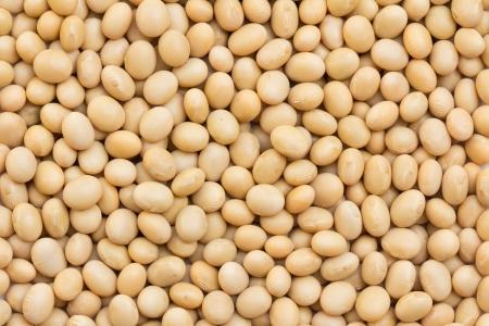 soya: Imagen de cerca granos de soja de fondo