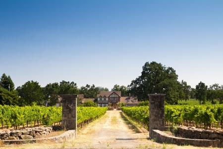 napa: Farmer house in a vineyard