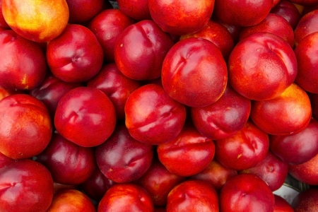 Close up of a large collection of red nectarine photo