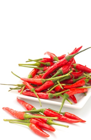 Red chilli in a square plate isolated on white background