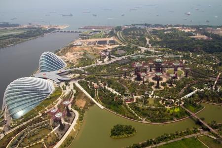 arboleda: Jardines por la vista de la bah�a desde la parte superior de Singapur Marina Bay Hotel Skypark