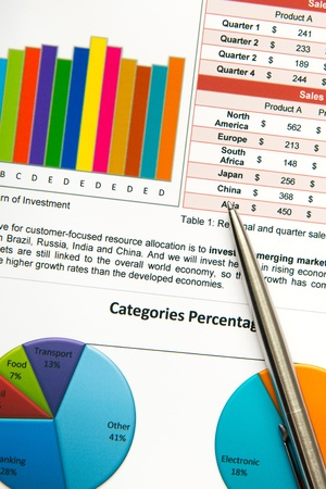 Business financial sheet showing annual performance Stock Photo - 18262722