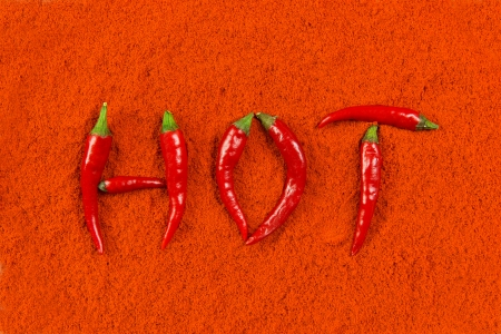 Hot red chili peppers on chili powder background photo