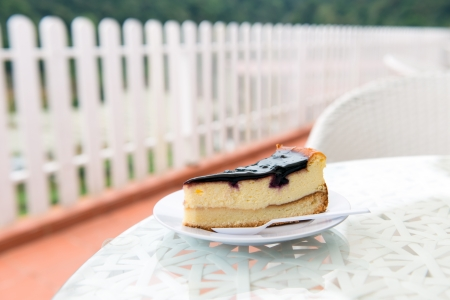 Piece of blueberry cheese cake on white plate