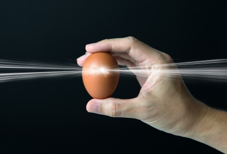 the next life: New life concept with hand holding a cracked egg