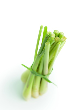 Bundle of fresh lemongrass isolated on white background
