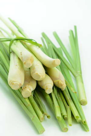 Bunch of lemongrass isolated on white background photo