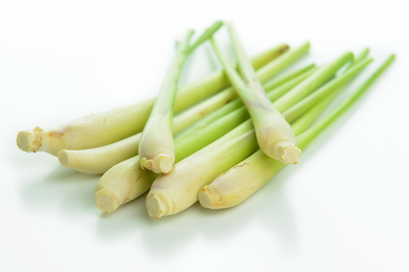 Bunch of lemongrass isolated on white background