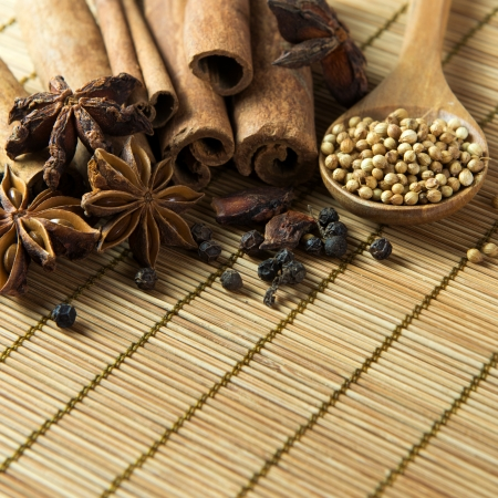 Indian spices includes cinnamon stick, aniseed, peppercorns and black pepper