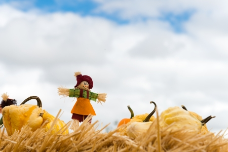 autumn scarecrow: Halloween doll with pumpkins against dark cloudy sky Stock Photo