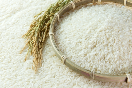 Close-up image of paddy and rice grain photo