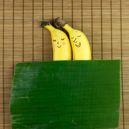 bamboo mat: Lovely banana couple sleeping on bamboo mat with banana leaf as blanket Stock Photo