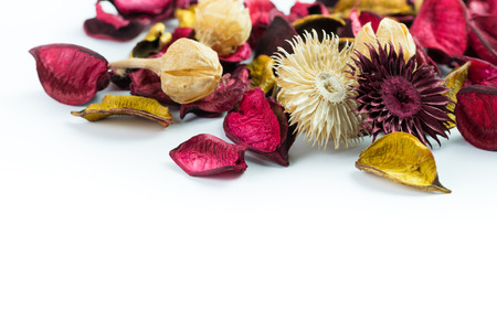 Dried flowers and petals isolated on white background photo
