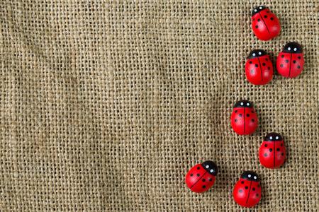 Row of ladybugs rest on gunny background
