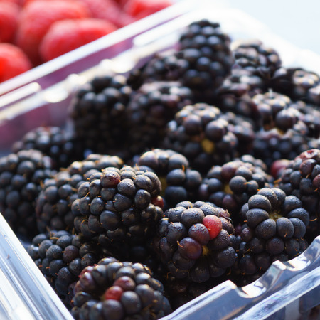 blackberries: Fresh ripe blackberries in the plastic pack