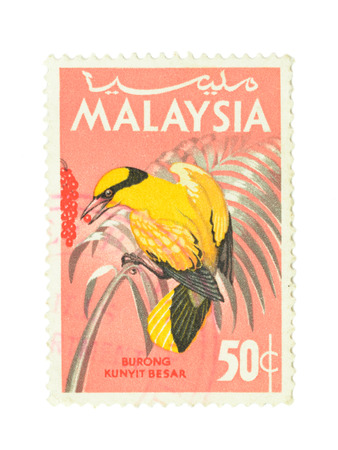 Close up of postage stamp Malaysia Black-naped Oriole, bird photo