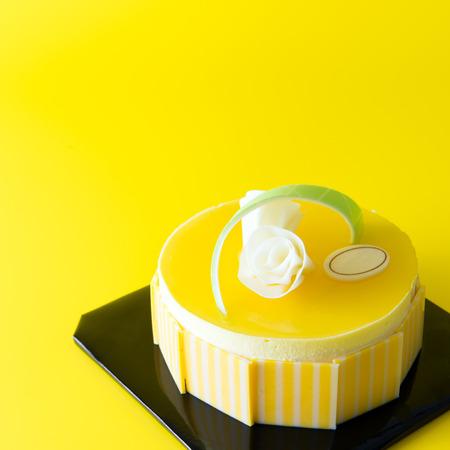 Close up of mango mousse cake on yellow background