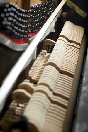 striking: Close up of hammers striking strings inside a piano
