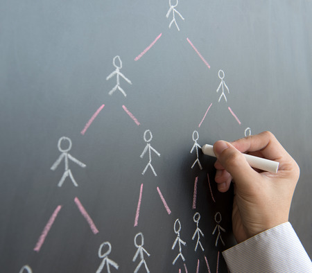 multiplying: Hand draw multi level marketing diagram on black board Stock Photo