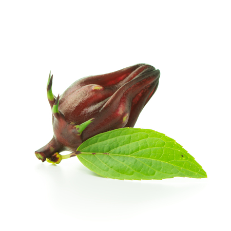 Roselle fruit with leaf on white background
