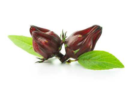 Fresh roselle fruit with leaves on white background Stock Photo