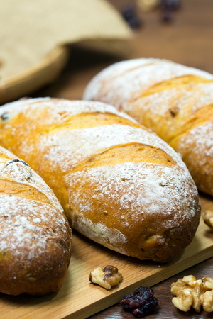 Homemade walnut and cranberry bread or loaf ready to serve Standard-Bild