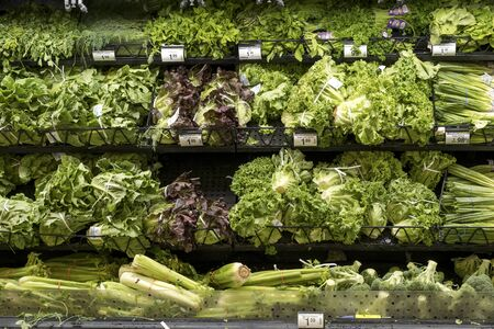 Michigan, US - JUL 27, 2019: Wide selection of fresh vegetables on shelf display in a supermarket at Novi, Michigan, United States