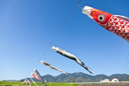 This is a picture of carp streamers is decorated on the day of children  photo