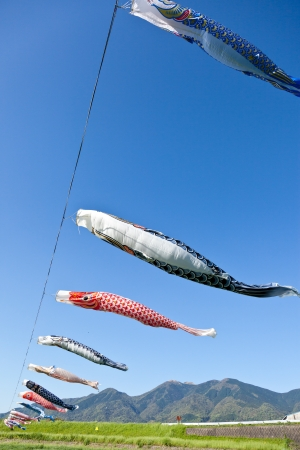 This is a picture of carp streamers is decorated on the day of children  Stock Photo