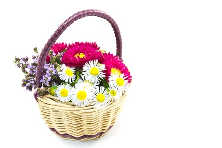 This is a picture of the flower basket made by such as wild chrysanthemum and aster  photo