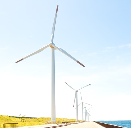 photograph of a wind farm photo