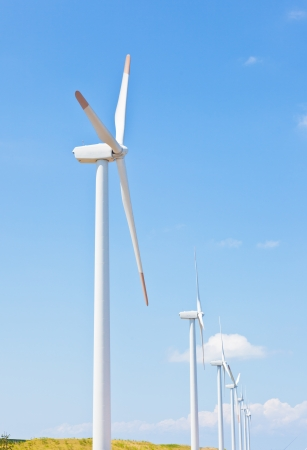 This is a photograph of a wind farm that I have taken in August. photo