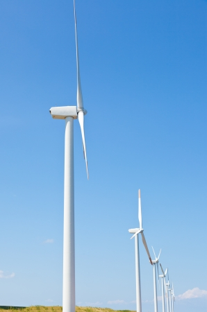 This is a photograph of a wind farm that I have taken in August  photo