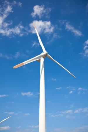 This is a photograph of a wind farm that I have taken. photo