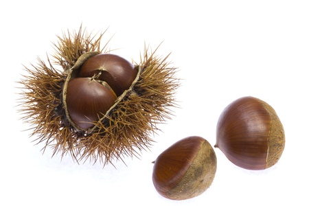 This is a picture of chestnuts that I have picked up in the fall. Stock Photo