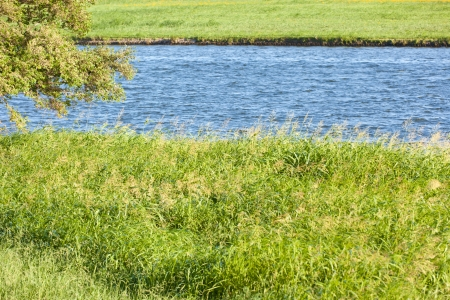 riverside landscape: This is a photo of the riverside landscape of summer  Stock Photo
