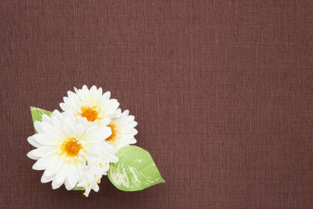 This is a photograph of a white artificial flowers on the table cloth.