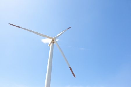 This is a photograph of a wind farm. photo