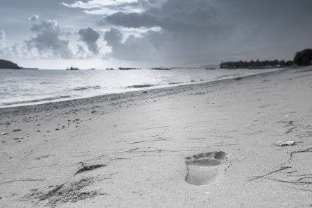 Footprints in the sand area