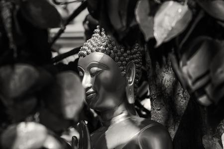 buddha statue black and white
