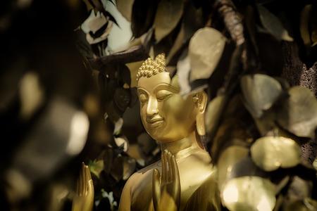 bluddha statue in Thailand