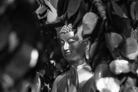 buddha statue: buddha statue black and white
