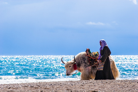 Tibetan Yak Herders at Namtso Lake