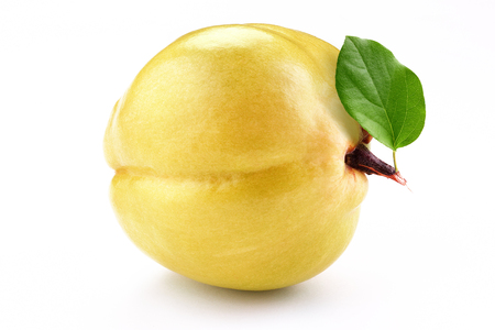fresh yellow quince with slice  isolated white background