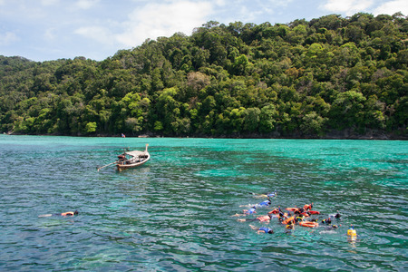 live coral: See throught the Andaman