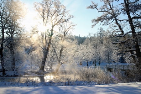 A pond steaming on a cold winter day in Sweden Stock Photo - 17546190