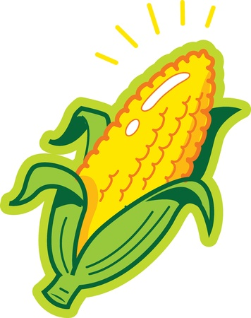 crop  stalks: Ear of Corn